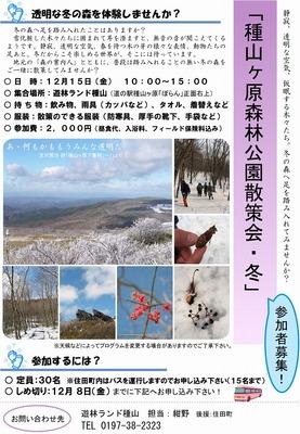 冬の種山の森を歩きましょう!